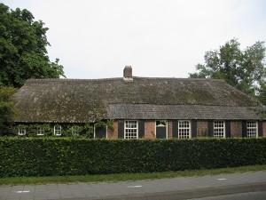 Rieten dak Moergestel renovatie (oud)