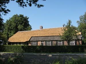 Rieten dak Moergestel renovatie (nieuw)