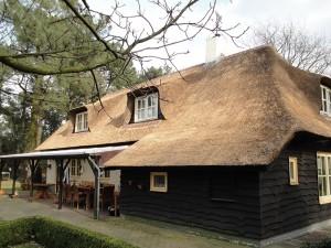Rieten dak Breugel